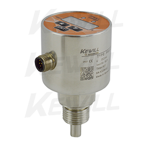FS63系列数显型流量监控器